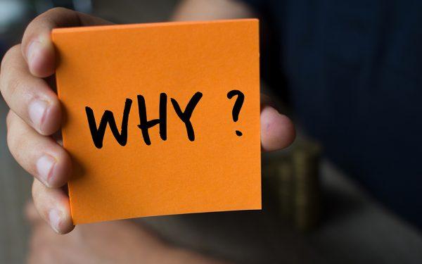 Was Startups vom Geschäftsmodell erfolgreicher Selbstständiger lernen können - Michaela Schächner